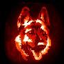 Avatar: 135742 2011-10-31 19:55:54 -0400
